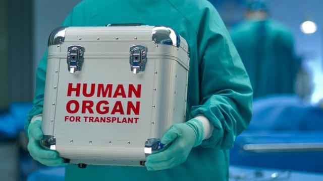 organr